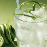 Gin & Tonic – De complete gids voor de perfecte mix