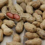 De beste veganistische en vegetarische proteïnebronnen