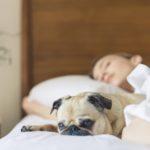 Langer slapen leidt tot een gezonder dieet