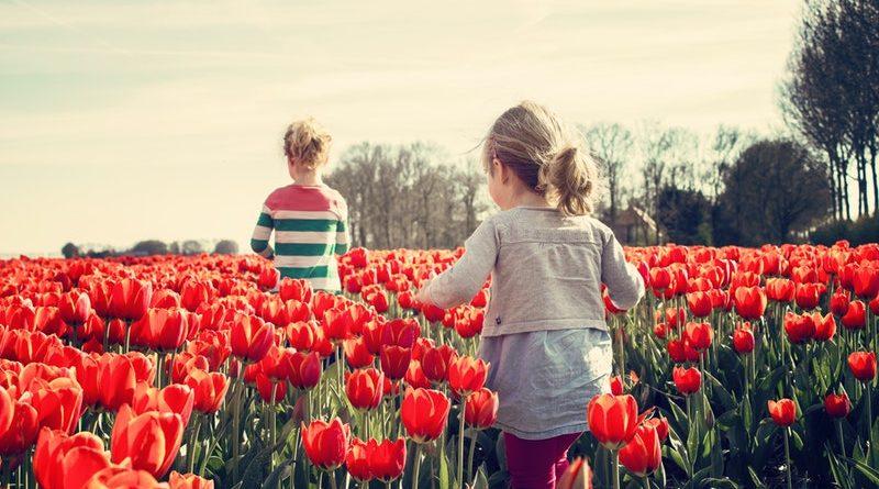 10 jassen voor het voorjaar voor meisjes en jongens