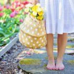 Tips voor het opknappen van je tuin