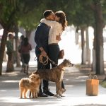 Film tip: Dog Days